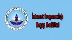 İnternet Programcılığı Megep Modülleri