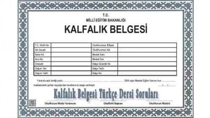 Kalfalık Belgesi Türkçe Dersi Soruları